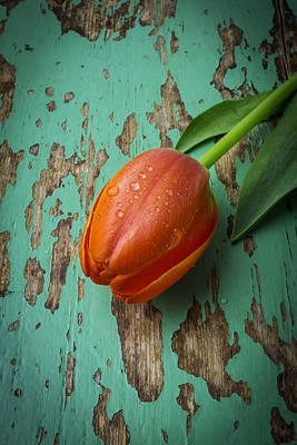 Chip Photograph - Tulip On Old Green Table by Garry Gay