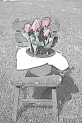 Photograph - Tulip On The Chair by Sherry Hallemeier