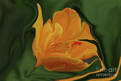 Photograph - Tulip by Rick Rauzi
