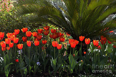 Curated Weekender Tote Bags - Tulip Row Under a Palmetto by Catherine Sherman
