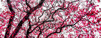 Photograph - Tulip Tree Abstracted 4 by Michael Arend