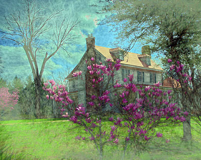 Photograph - Tulip Tree And House by Larry Bishop
