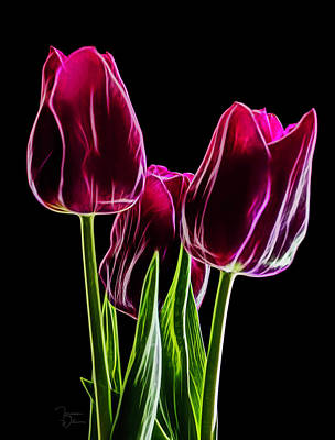 Photograph - Tulip Trio Fractal Shine by Teresa Wilson