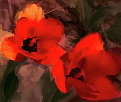 Photograph - Tulip Twins Blend by Aliceann Carlton