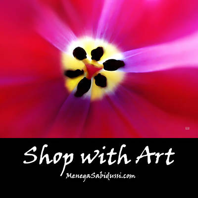 Photograph - Tulip Vivid Floral Abstract - Shop With Art by Menega Sabidussi