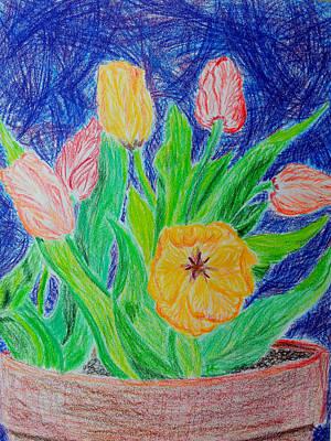 Tulipmotions Original