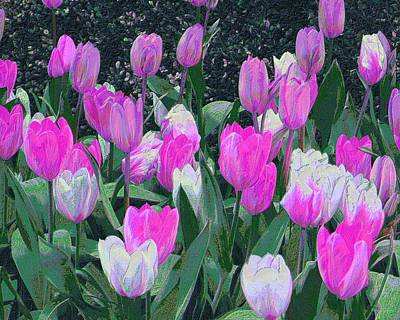 Digital Art - Tulips 327dp by Brian Gryphon