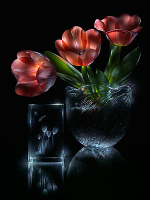 Recently Sold - Still Life Royalty-Free and Rights-Managed Images - Tulips by Alexey Kljatov