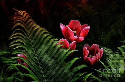 Photograph - Tulips And Fern  by Elaine Manley