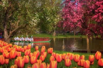 Photograph - Tulips And Swan Boats In The Boston Public Garden by Joann Vitali