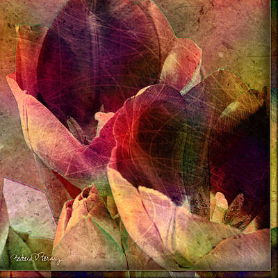 Digital Art - Tulips by Barbara Berney