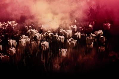 Digital Art - Tulips Burnt Sienna by Richard Ricci