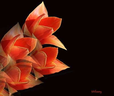 Tulips Dramatic Orange Montage Art Print