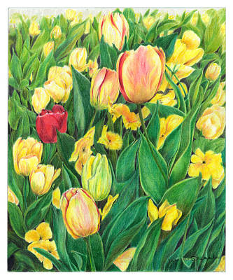 Tulips From Amsterdam Art Print by Jeanette Schumacher