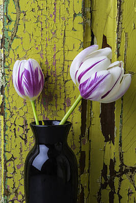 White Tulip Photograph - Tulips In Black Vase by Garry Gay