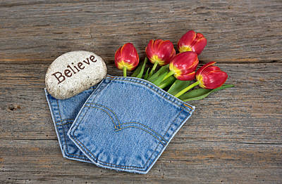 Pocket Stones Photograph - Tulips In Pocket by Maria Dryfhout