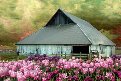 Barn Digital Art - Tulips In Skagit Valley by Jeff Burgess