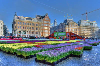 Photograph - Tulips In The City by Nadia Sanowar