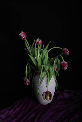 Still Life Photograph - Tulips In Vase by Guna Andersone