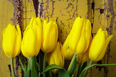 Chip Photograph - Tulips Leaning Against Yellow Wall by Garry Gay