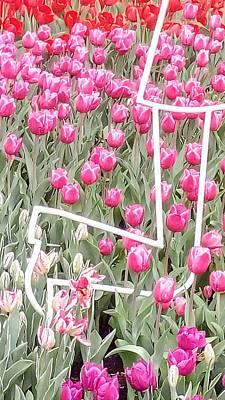 Photograph - Tulips Meeting by Oleg Zavarzin