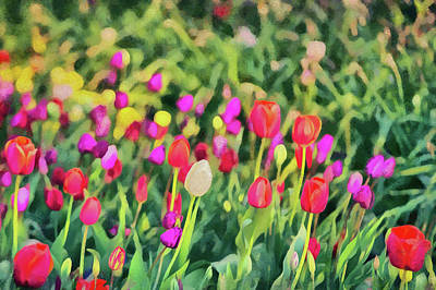 Digital Art - Tulips. Monet Style Digital Painting. by Michael Goyberg