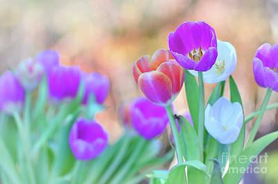 Tulips On Pastel Bokeh Art Print by Kaye Menner