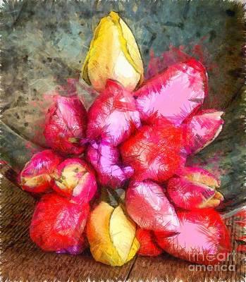 Bloosom Photograph - Tulips Pencil by Edward Fielding
