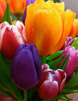 Photograph - Tulips Smiling by Marie Hicks