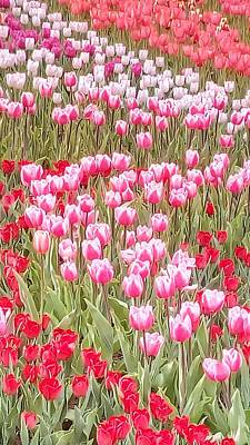 Photograph - Tulips Spirals by Oleg Zavarzin