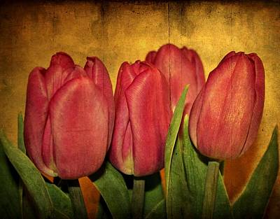 Tulips Standing Art Print by Cathie Tyler