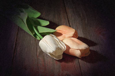 Flower Photograph - Tulips by Tom Mc Nemar
