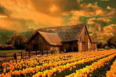 Skagit Digital Art - Tulips With Barn2 by Jeff Burgess