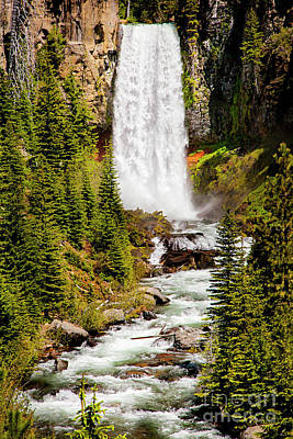 Photograph - Tumalo Falls Oregon by David Millenheft