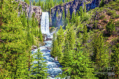 Photograph - Tumalo Waterfall by David Millenheft