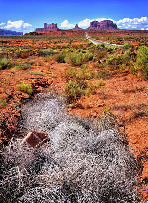 Photograph - Tumbleweed Near Monument Valley by Carolyn Derstine