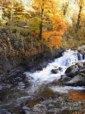 Tumwater Falls In The Autumn Art Print by Terri Thompson