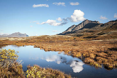 Photograph - Tundra Pond Reflections In Fall by Michele Cornelius