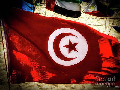 Photograph - Tunisia Flag by Julian Starks