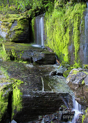 Photograph - Tunnel 33 Falls by Idaho Scenic Images Linda Lantzy