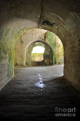 Photograph - Tunnel by Anjanette Douglas