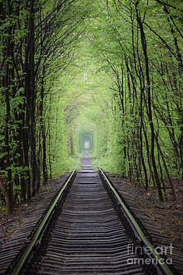 Photograph - Tunnel Of Love by Steven Liveoak
