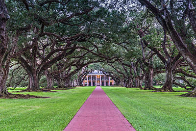 Plantations Photograph - Tunnel Of Oaks by Tod and Cynthia Grubbs