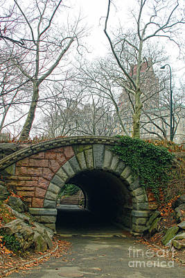 Tunnel On Pathway Art Print by Sandy Moulder