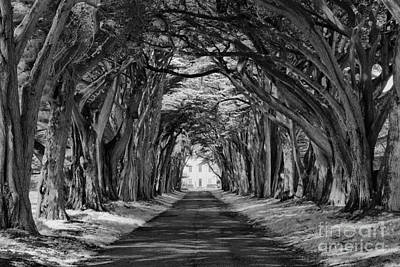 Photograph - Tunnel To Marconi Station Black And White by Adam Jewell