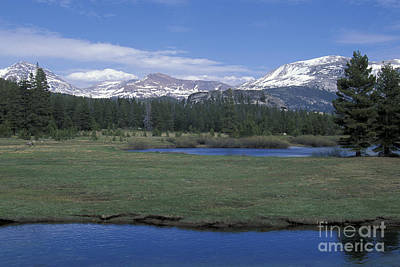 Art Print featuring the photograph Tuolomne Meadows In June by Stan and Anne Foster