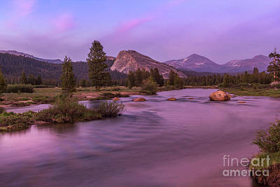 Tuolumne Meadow Art Print