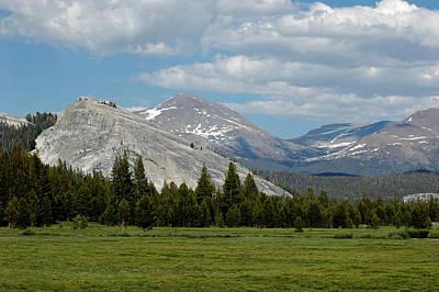 Branches Photograph - Tuolumne Meadows Mountains Of Yosemite by LeeAnn McLaneGoetz McLaneGoetzStudioLLCcom