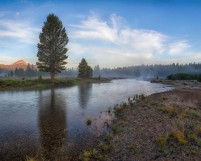 Photograph - Tuolumne Morrning by Anthony Michael Bonafede