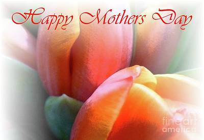 Photograph - Tulips For Mother by Barbie Corbett-Newmin